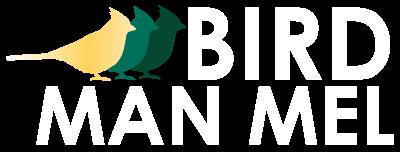 Bird Migration Maps